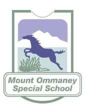 Mount Ommaney Special School