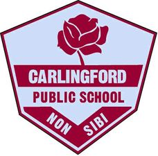 Carlingford Public School - Australia Private Schools