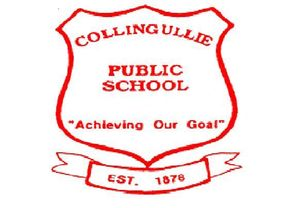 Collingullie Public School