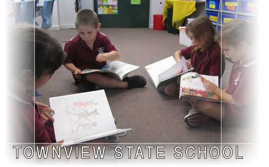 Townview State School