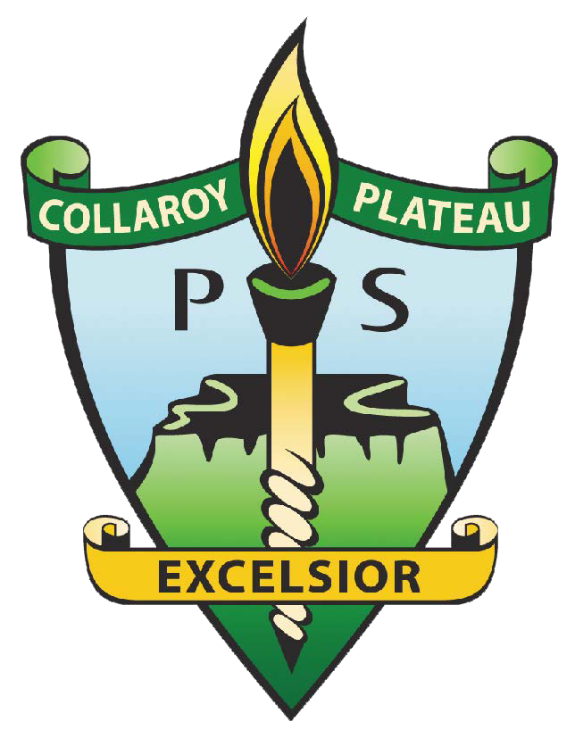 Collaroy Plateau Public School - Australia Private Schools